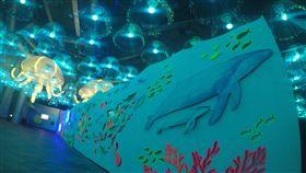 迎接台灣燈會 海生館打造光之水母隧道迎接台灣燈會,位於屏東墾丁的國立海洋生物博物館30日起展示全國最大的水母藝術燈,搭配小型的發光水母,創造夢幻的「光之水母隧道」。(海景公司提供)中央社記者郭芷瑄傳真 108年1月30日