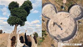 萬坪公園、立文公園/Sarina小萬、徐酸酸的跑跳人生授權提供
