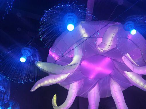2019年的台灣燈會在屏東縣,而屏東各地紛紛響應,位於墾丁的國立海洋生物博物館,打造全國最大的水母藝術燈,搭配小型的發光水母,創造出夢幻的光之水母隧道。