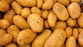 16:9 馬鈴薯 土豆 圖/翻攝自pixabay https://pixabay.com/photo-411975/