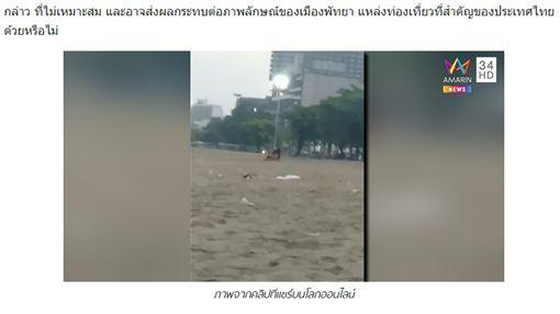 泰國芭達雅海灘,情侶,野戰(圖/翻攝自amarintv)