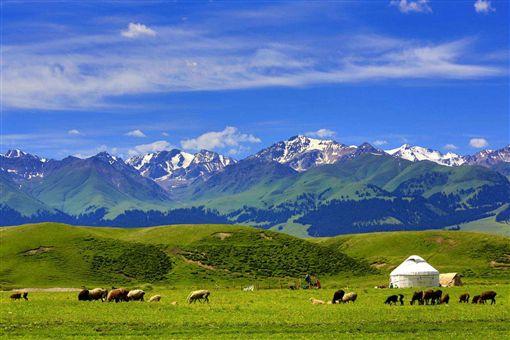 ▲那拉提草原夏天最療癒的風景。(圖/喜鴻假期提供)