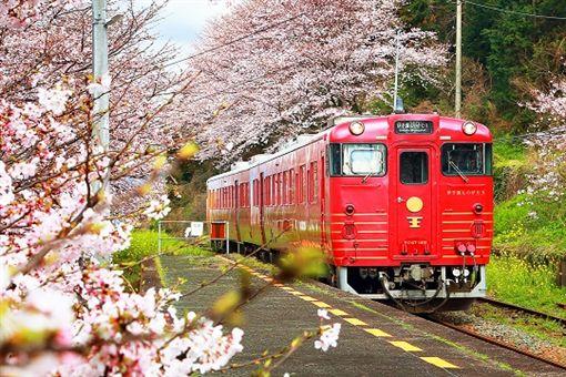 ▲翔笙旅行社特別安排在星級的觀光列車「伊予灘物語」上吃早餐、配美景。(圖/翔笙旅行社提供)