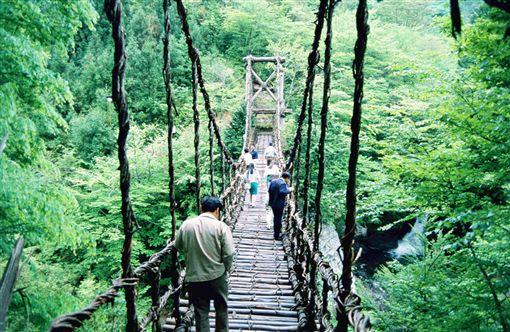 ▲挑戰踏上祖谷溪上的蔓藤橋。(圖/翔笙旅行社提供)
