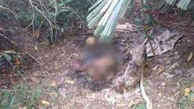 女童,失蹤,棄屍,器官,兇手,馬來西亞 http://www.chinapress.com.my/?p=1503773&fbclid=IwAR1pnY7htZ0BQ5r5L6C4WqSoM6T62YGbO3QDbkw-86Lnz_Xyo6J96haWptI