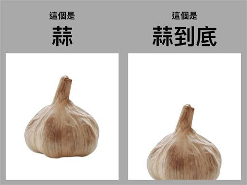 王金平臉書台灣公道伯發蒜圖表明選總統,臉書