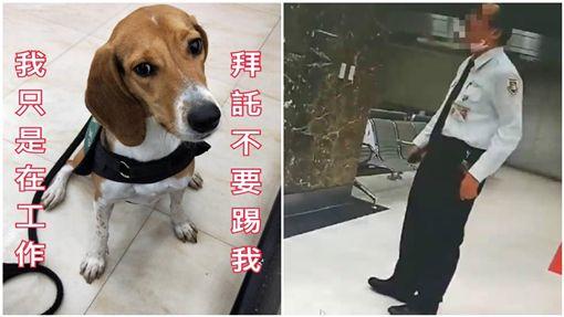 全民怒了!「護國神犬」遭移民署官員狠踹 他辯:我討厭狗 圖/翻攝自有點毛毛的臉書