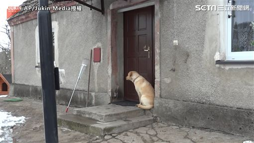 ▲汪星人坐在門外,等著主人開門。(圖/AP/Jukin Media授權)