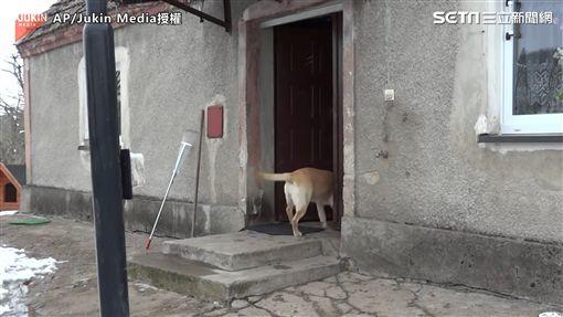 ▲繞了好久,主人總算來「開門放狗」(圖/AP/Jukin Media授權)