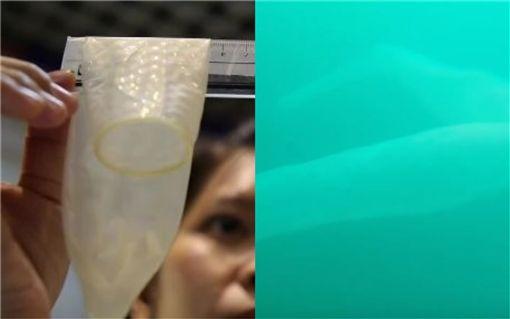 火體蟲(pyrosome),潛水,紐西蘭,保險套