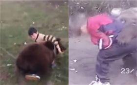 俄羅斯,小孩,戰鬥民族,熊 合成圖/梨視頻、Youtube
