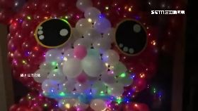巧手製貓燈12000