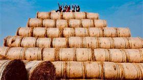 稻草,吸菸,雲林,虎尾,開放,假日,金億陽洋菇農場 圖/翻攝自臉書金億陽洋菇農場