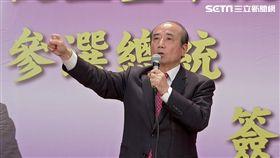 金平選總統1200