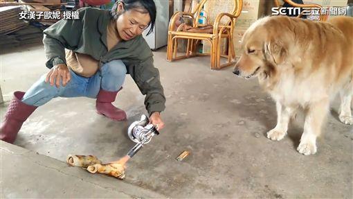 ▲「歐妮」看見阿嬤正用噴槍烹飪「炙燒牛骨頭」。(圖/女漢子歐妮 授權)