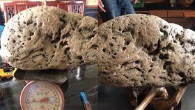 海邊撿怪洞木…網驚「這大便值1000萬」 圖翻攝自爆廢公社
