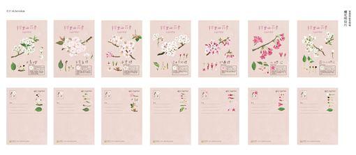 阿里山,櫻花季,明信片,/林務局提供