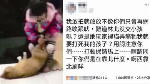 雲林,虐貓,臉書,人夫,虐待動物,女兒。翻攝自爆料公社