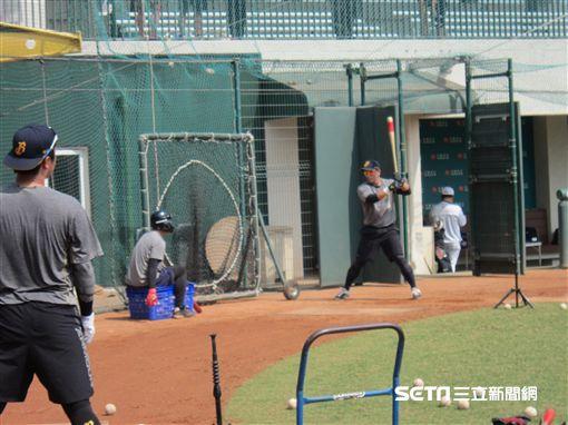 ▲中信兄弟選手周思齊提出仲裁薪資後,春訓正常練球。(圖/記者蕭保祥攝影)