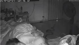 影/75歲嬤睡夢中痛醒 起身一看驚見「蟒蛇在身邊」 圖/翻攝自youtube
