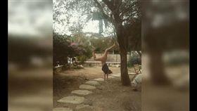 瑜珈,倒立,硬騎,出糗 圖/翻攝自網路