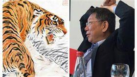 老虎、柯文哲(組合圖)