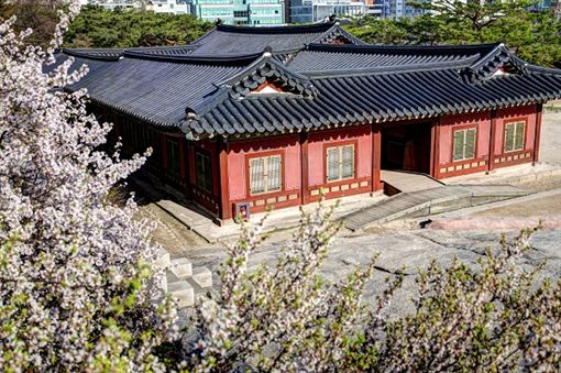 2昌慶宮shutterstock_266517494.jpg