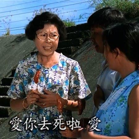 文英阿姨 圖/翻攝自林靜儀臉書