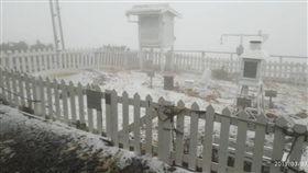 圖/玉山降3月雪!紛飛美景「白茫茫」 凌晨積雪1公分 氣象局