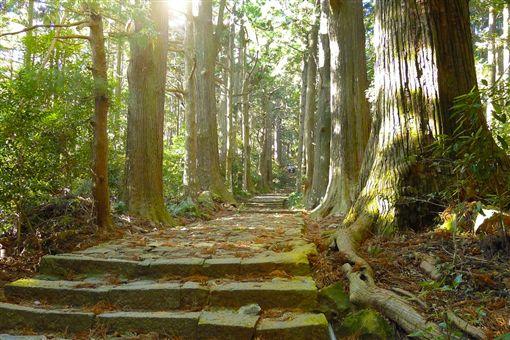 ▲幽靜的熊野古道是日本的心靈聖地(圖/翔笙旅行社)