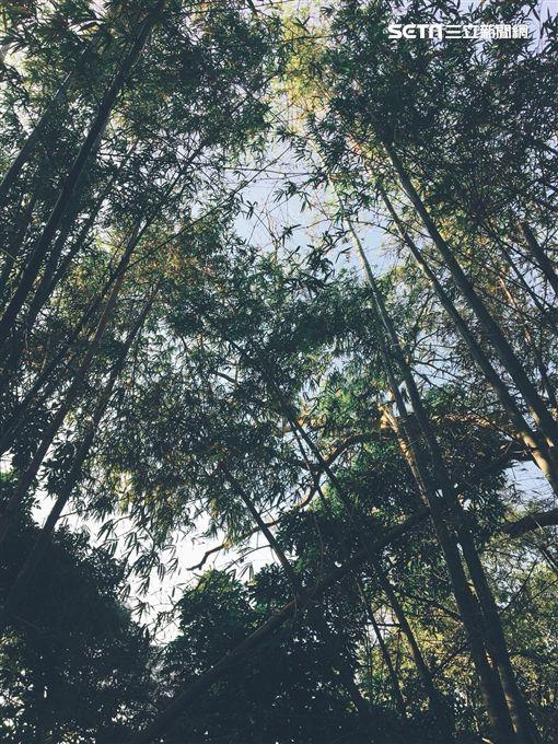 高峰植物園(新竹市政府)
