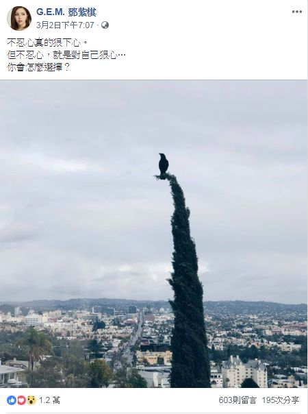 鄧紫棋/翻攝自鄧紫棋臉書