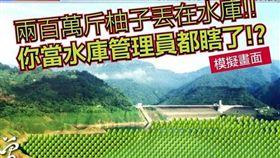 ▲網酸媒體報導台南柚子丟水庫超瞎。(圖/翻攝臉書「奉命刑事」專頁)