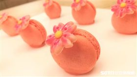 晚餐期間限定的櫻花馬卡龍。(圖/記者楊晴雯攝)