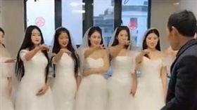 亡妻遺願「拍婚紗照」慶祝金婚…7女兒披婚紗為老父圓夢(圖/翻攝自騰訊視頻)