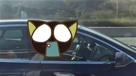 特斯拉,自動駕駛,Tesla,高速公路,開車,睡覺, 圖/翻攝自YouTube
