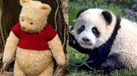 熊貓,韓國瑜,高雄,許沛,中國,維尼 圖/資料照