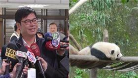 陳其邁,熊貓組合圖