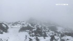 積雪達半米1200