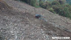 翠羅步道聯外道路 車滑落山谷釀一死/翻攝畫面