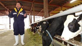 福島酪農談核災 要把消失130頭乳牛養回來311東日本大地震及福島核災屆滿8週年,福島縣離「難返區」很近的佐久間牧場已重新營業,今年1月開始生產生乳。牧場主人佐久間哲次表示,要把震災後消失的乳牛養回來。中央社記者楊明珠福島攝 108年3月11日