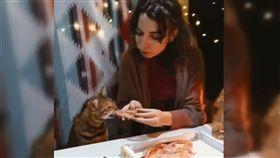 貓,飼主,共食,貓食,溫馨,噁心,披薩,寵物,輪流, 圖/翻攝自IG