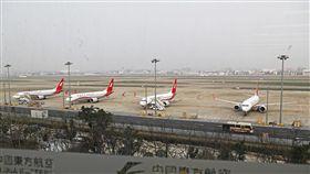 停飛737MAX8機型 中國:調查小組已啟程針對衣索比亞航空公司10日空難,中國民航局副局長李健11日表示,已派出兩人小組參與調查,確認737MAX8飛機沒問題後,再重新恢復商業飛行。圖為上海虹橋國際機場停機坪的波音737-8客機。(中新社提供)中央社  108年3月11日
