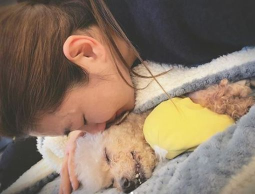 Selina愛犬離世。(圖/翻攝自Selina臉書)