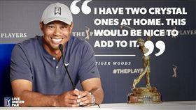 ▲伍茲生涯2度拿下球員錦標賽冠軍。(圖/翻攝自PGATOUR推特)