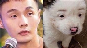李榮浩,狗,微博