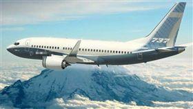 波音737-800,飛安,發動機故障,俄羅斯 圖/翻攝自推特