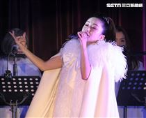 日本女星酒井法子(15)日晚間首度在台北舉行晚宴秀「台灣好!頂樂秀」,連唱了好幾首大家熟悉的歌曲。(記者邱榮吉/攝影)