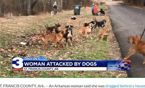 女慘遭恐怖「犬決」,被10狗咬成重傷。(圖/翻攝自福斯新聞網)