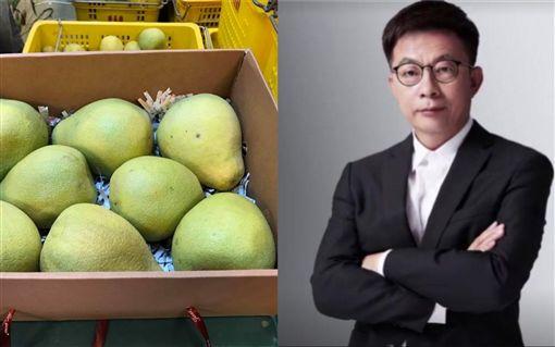 立委補選,台南,文旦,郭國文 (合成圖/翻攝自臉書)